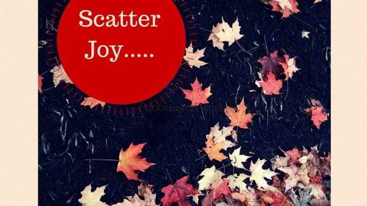 Scattering Joy: lessons learned at preschool